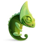 Chameleonworld.ru группа в Моем Мире.