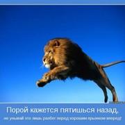 Олег Биц on My World.